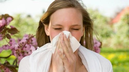 Chega de Alergia! 5 terapias naturais pra acabar com ela de uma vez por todas!